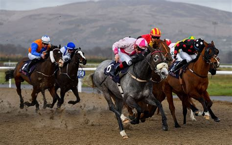 Horse racing tips 20 March: Dundalk best bets