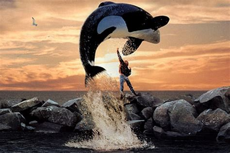 See the Cast of the 'Free Willy' Movies Then and Now
